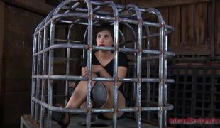 Sexy babe in a cage endures all sorts of love toys betwixt her legs